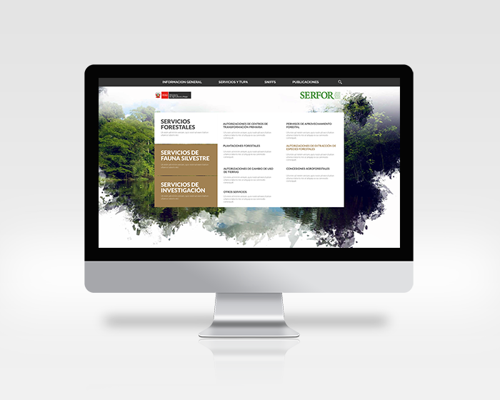 SERFOR WEB COVER